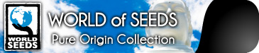 WORLD OF SEEDS PURE ORIGIN REGULAR SEEDS