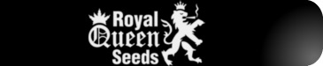 ROYAL-QUEEN SEEDS