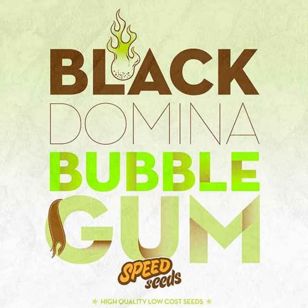 BLACK DOMINA X BUBBLE GUM - SPEED SEEDS