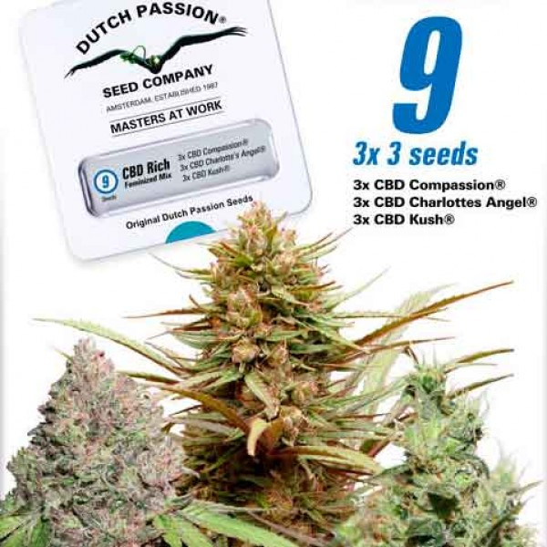 CBD Feminized Mix - DUTCH PASSION