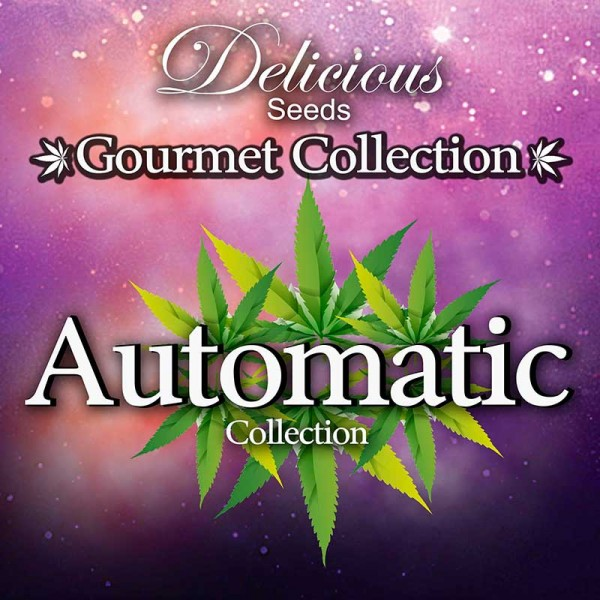 Gourmet Collection - Automatic Strains - DELICIOUS SEEDS - GOURMET COLLECTION