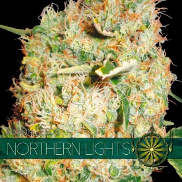 NORTHERN LIGHTS - VISION SEEDS