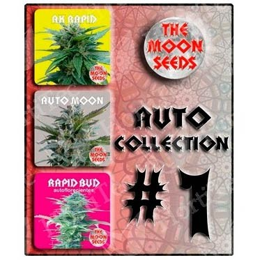 Auto colecction - autoflorecientes 6 seeds - MOON SEEDS