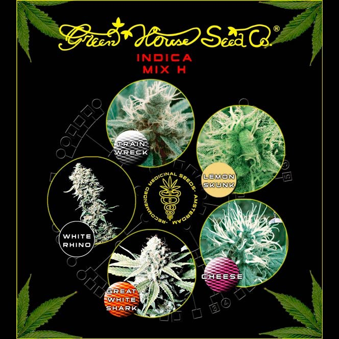 Indica Mix H - Collections - GREENHOUSE