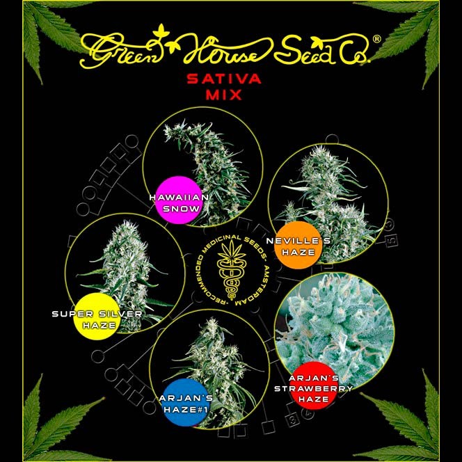 Sativa Mix - Collections - GREENHOUSE