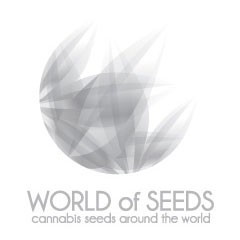Session - Reggae Seeds
