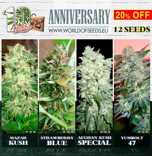 10th Anniversary Pack - WORLDOFSEEDS