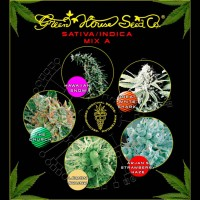 Purchase Sativa / Indica Mix A