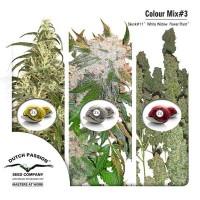 Purchase Colour Mix 3