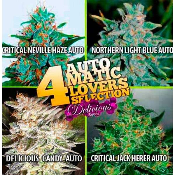 4 Automatic Lovers Selection - Root Catalog - Todos los Productos