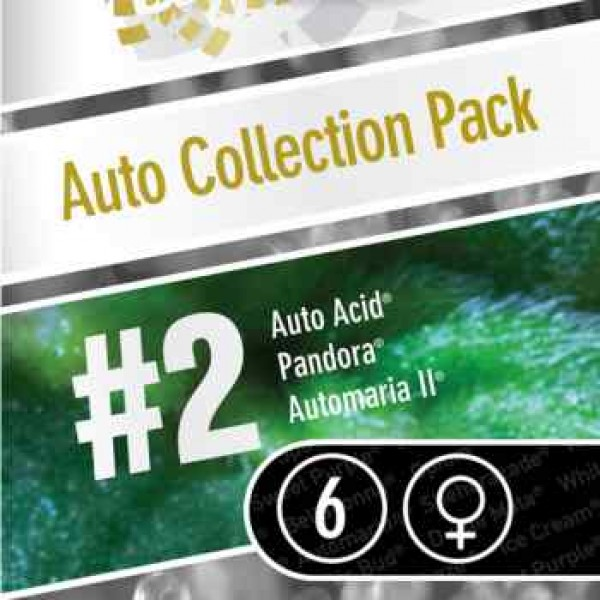 Auto Collection pack #2 - PARADISE SEEDS FEMINIZADAS