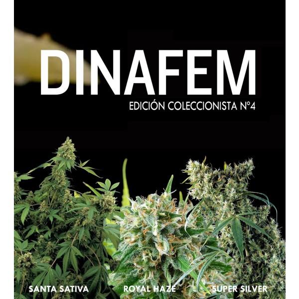 Edición coleccionista Nº4 6 semillas - DINAFEM SEEDS