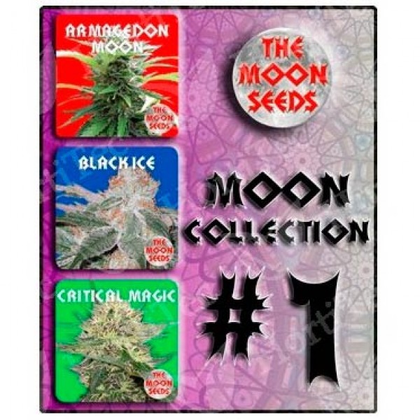 MOON COLLECTION  #1 -  6 UNIDS   - MOON SEEDS