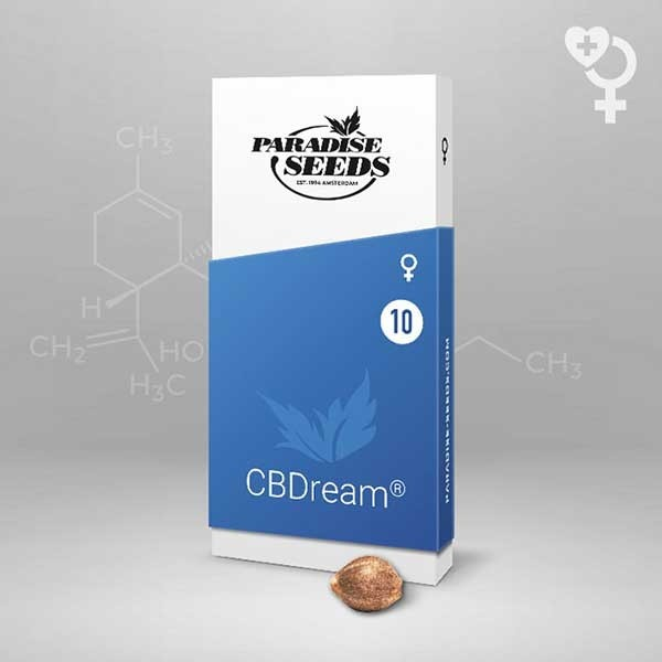 CBDream