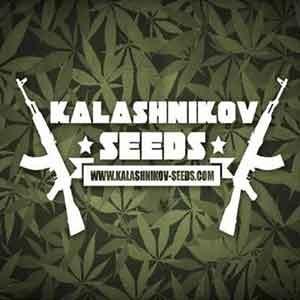 Moscow Blueberry   - Kalashnikov