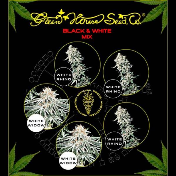Black & White Mix  - GREENHOUSE