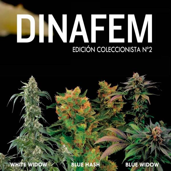 Edición coleccionista Nº 2  - DINAFEM SEEDS