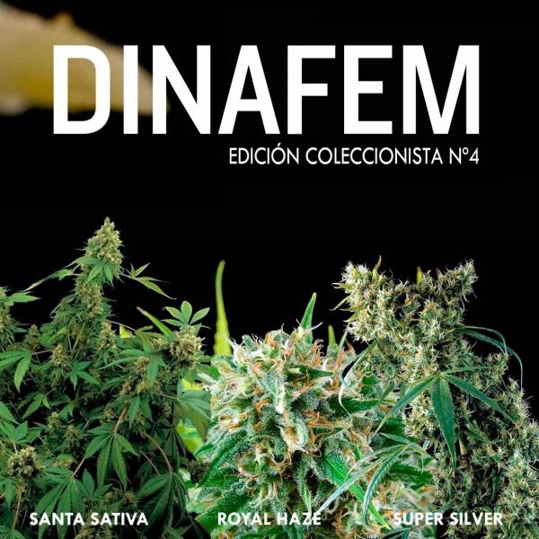Edición  coleccionista Nº 4 - DINAFEM SEEDS