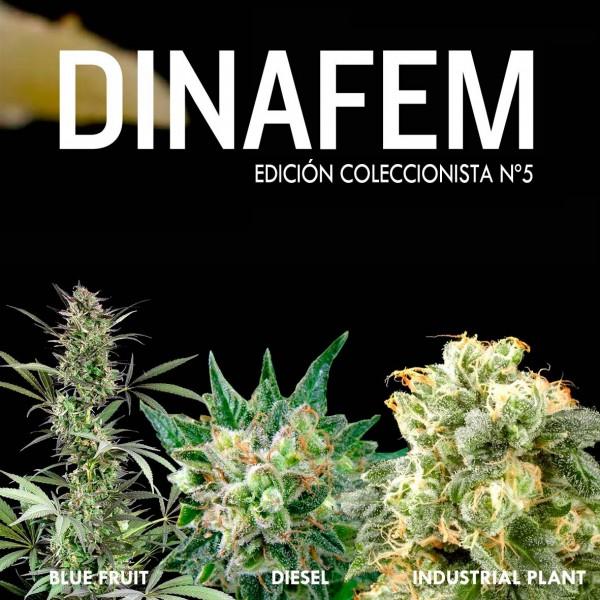 Edición coleccionista Nº 5 - DINAFEM SEEDS