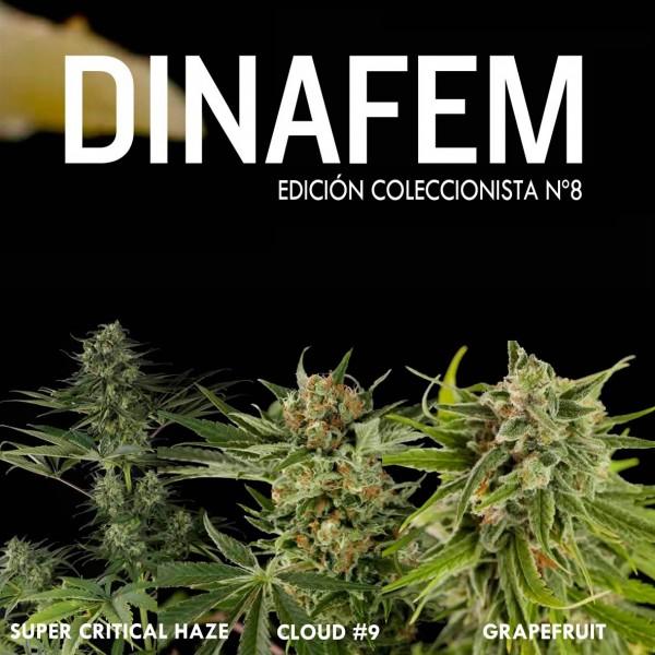 Edición coleccionista Nº 8 - DINAFEM SEEDS