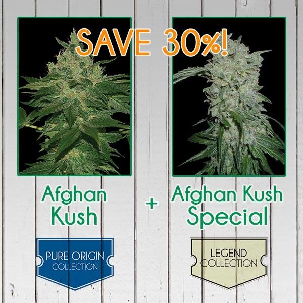 Afghan Kush Pack - Feminized - WORLDOFSEEDS