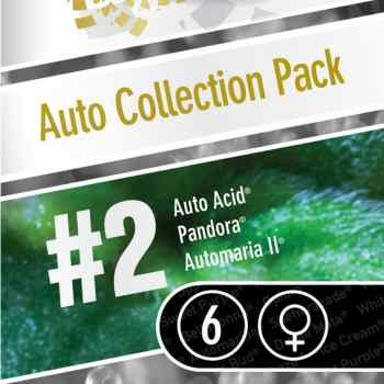 Auto Collection pack #2 - PARADISE SEEDS