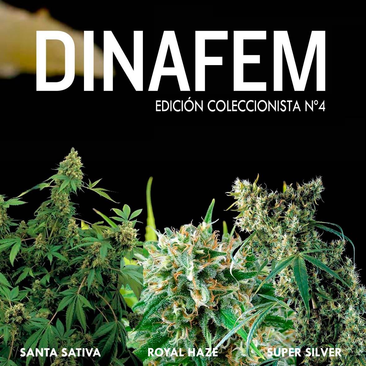 Edición  coleccionista Nº 4 - Collections - DINAFEM SEEDS