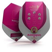 Purchase Bubblegum XL
