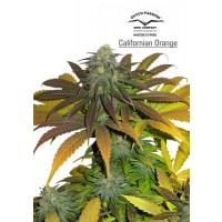 Purchase Californian Orange