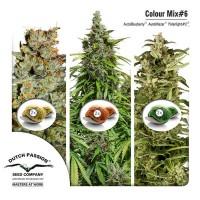 Purchase Colour Mix 6 (AutoFem)