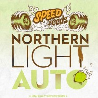 Purchase NORTHERN LIGHT AUTO