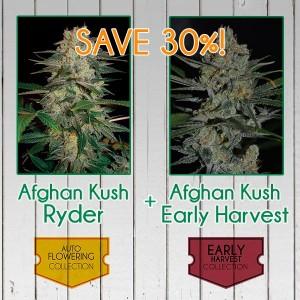 Afghan Kush Fast Pack - 6 seeds