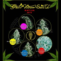 Purchase Sativa Mix