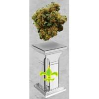 Purchase HEFESTO PURE POWER PLANT - 3 UND FEM (XIII TITANE)