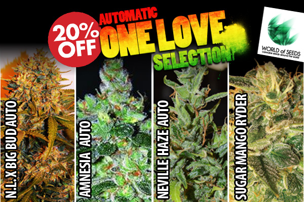 Automatic One Love Collection