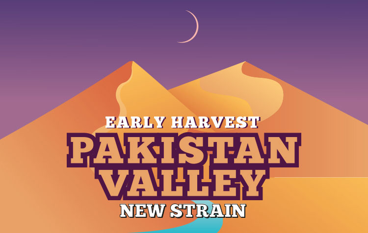 PAKISTAN VALLEY EARLY HARVEST