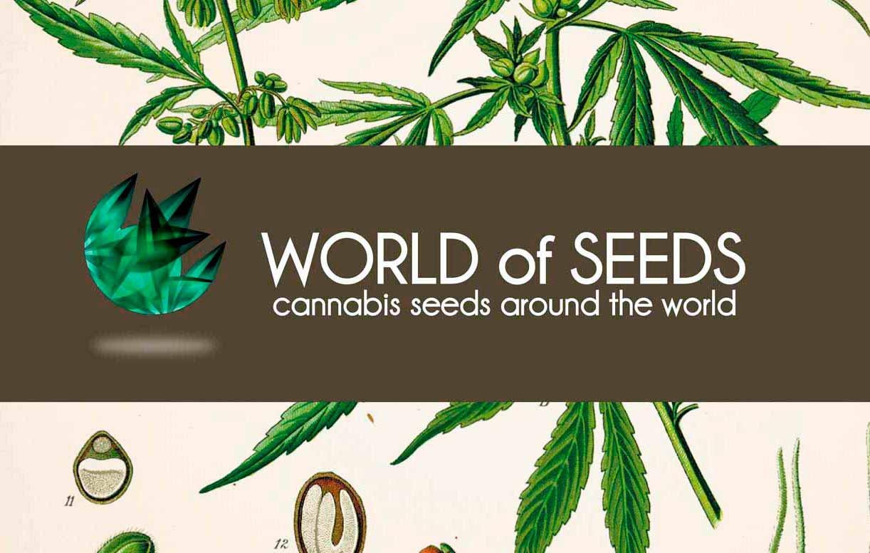 World of Cannabis Seeds